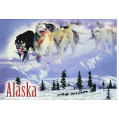 Requirements to become a pharmacy technician in Alaska