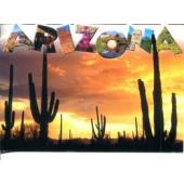 Arizona pharmacy technician training programs
