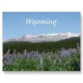 Wyoming pharmacy technician training programs