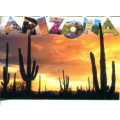Requirements to become a pharmacy technician in Arizona
