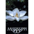 Pharmacy technician employment and salary trends, and career opportunities in Mississippi