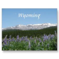 Wyoming pharmacy technician training programs